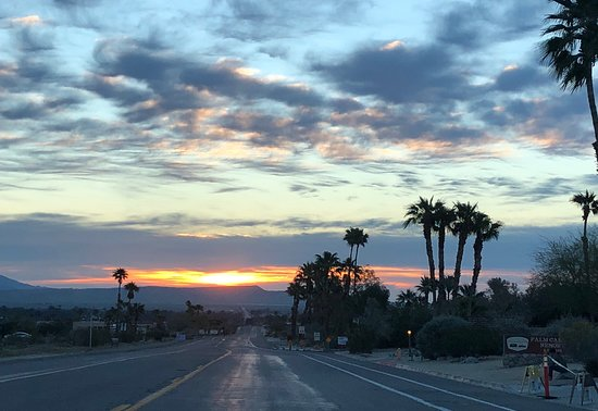 Anza-Borrego Desert State Park: Palm Canyon visit