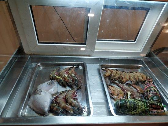 De BlueFin Seafood MultiCuisine Restaurant: ambience