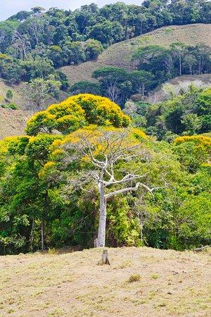 road to Nuayaca