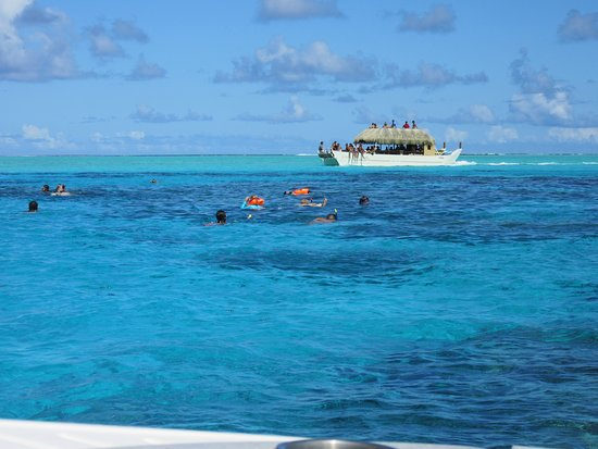 Signature Lagoon Snorkelling Tour: 4th stop