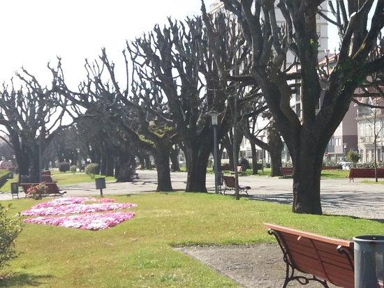 Jardim da Marginal
