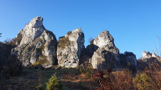 Podlesice, โปแลนด์: Widok ze szlaku