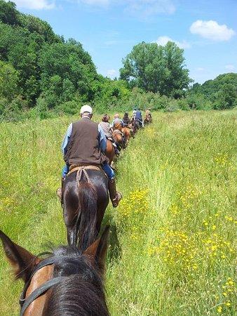 Associazione equestre Caino