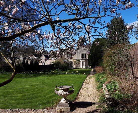The Close - Bed & Breakfast: The garden in spring