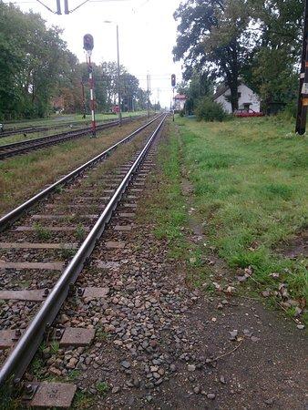 Stare Pole, פולין: Widok torów dworca w Starym Polu