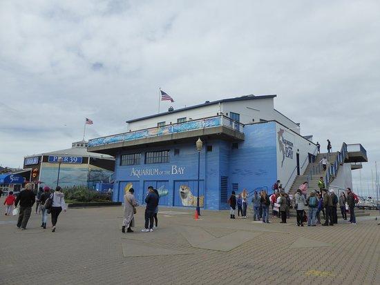 Aquarium of the Bay: Exterior