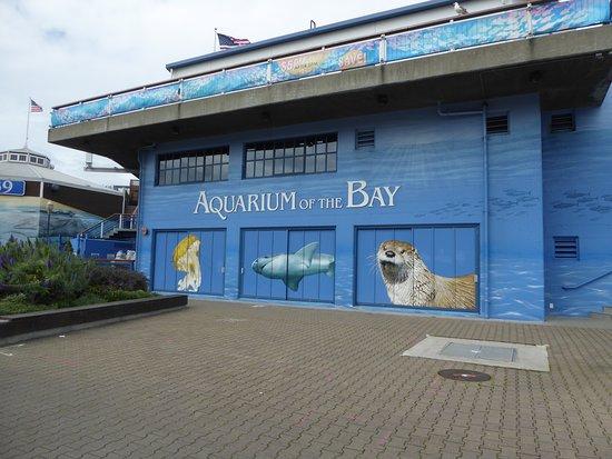 Aquarium of the Bay: Sign