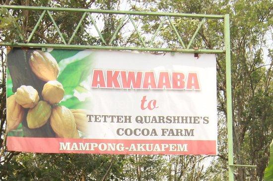 Zdjęcie Mampong