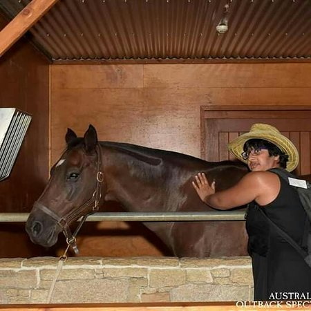 Australian Outback Spectacular: These photos are of me with Soren the wedge tailed eagle and Baretta the horse!