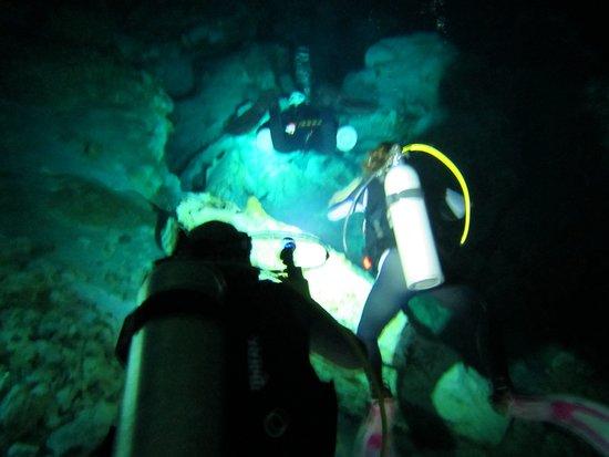 Dressel Divers: Cenotes Tajma-ha.  Flashlights a must.
