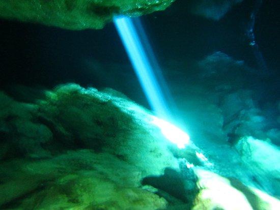 Dressel Divers: Cenotes Tajma-ha on a sunny day.