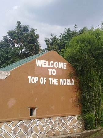 Top of the world the view point where you see the all beauty of Uganda😍