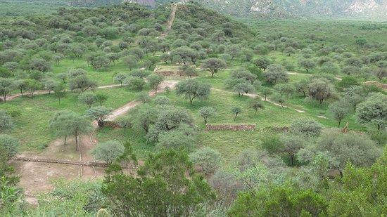 Ruinas de El Shincal: Vista panorámica de la zona central