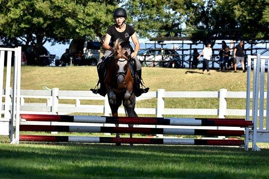 TIC TOC Equestrian