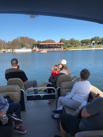 Our Wonderful Guests have so much fun Aboard The Lego Land Hotel Boat Cruises on Lake Eloise 🦅🐊🐢🦉