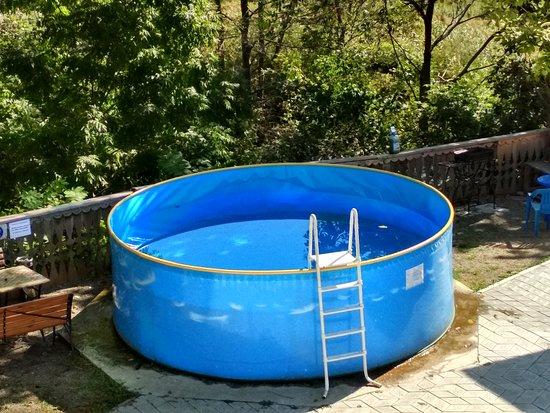 бассейн для взрослых и детей