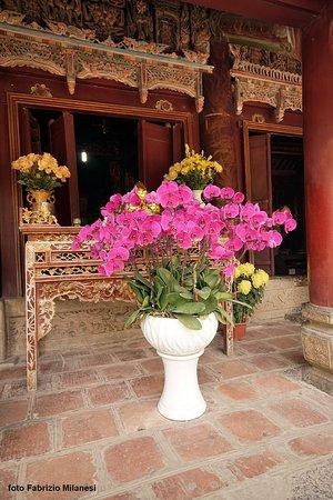 Fiori nel cortile del primo tempio