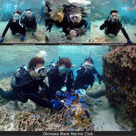 珊瑚の森シュノーケル&体験ダイビング 3/23
