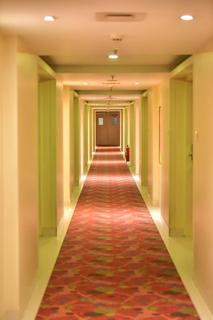 Picture of Room Floors