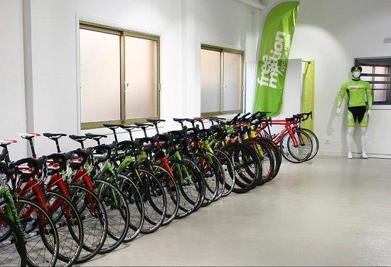 Free Motion Bikecenter - San Agustín