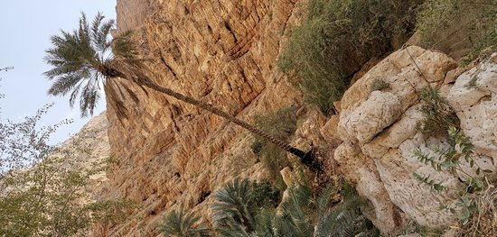 Pics of Wadi Shab