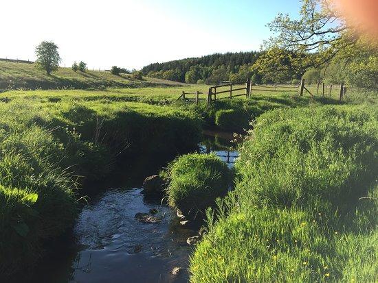 Eden Leisure Village: Eden's Pathways