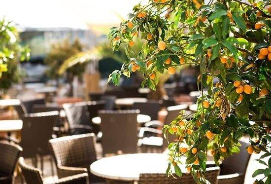 Seid ihr bereit für den Sommer? 😍 Nicht mehr lange und dann könnt ihr wieder bei Sonnenschein Cocktails genießen! ☀️ . . #zeitlosberlin