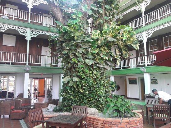 Cara Lodge: Courtyard/atrium