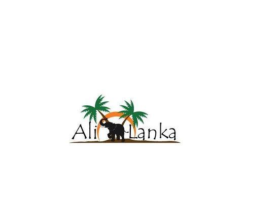 Ali lanka travels