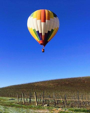 Balloons Over Paso