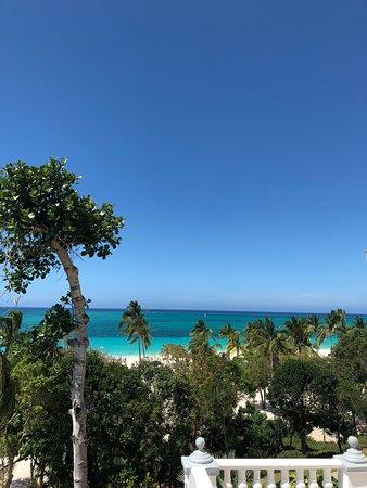 Sol Rio de Luna y Mares: lots of mature palms on the beach.