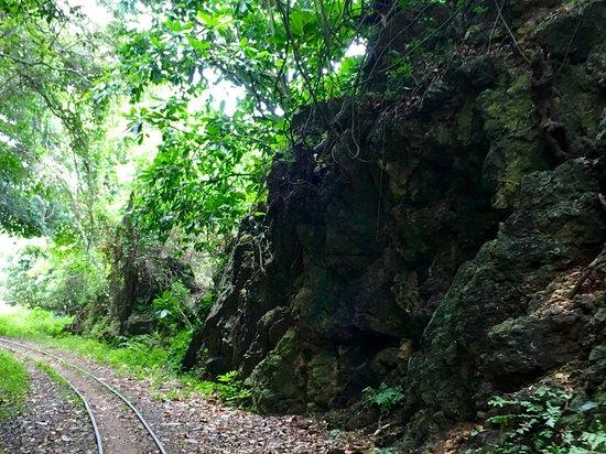 Nature along the way