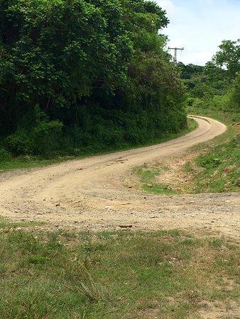 A local road