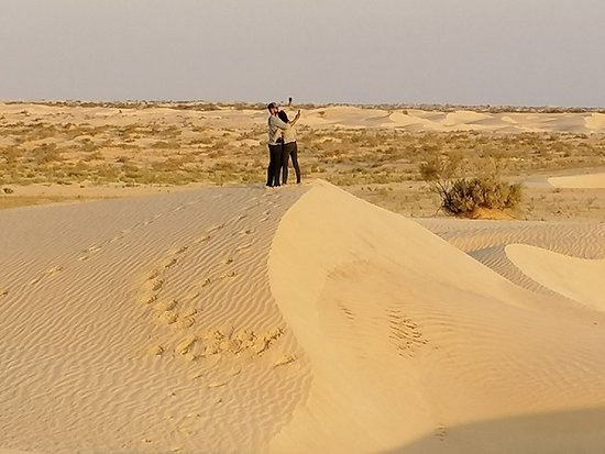 One overnight in the Sahara