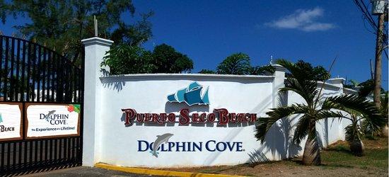 Dolphin Cove Puerto Seco Beach