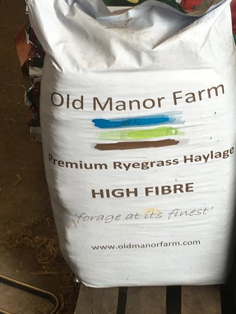 Premium Ryegrass and its high in fiber