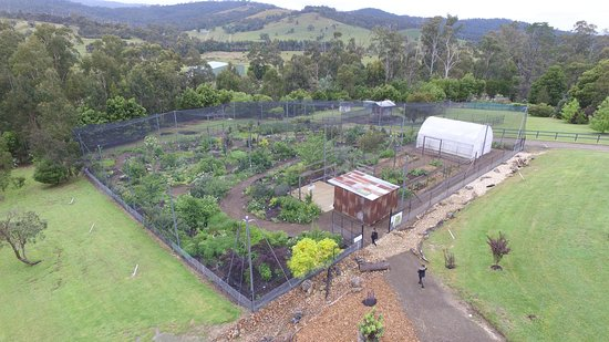 Edible Forest Yarra Valley