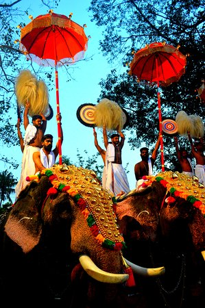 The Peruvanam Temple in Cherpu hosts one of the oldest festivals in the world, the legendary 1400 year old Peruvanam Pooram. Dedicated to Lord Shiva, Peruvanam Temple's ambience and charm draws in people from across the State