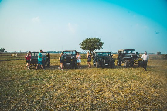 Tours By Jeeps