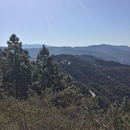 Mesmerizing  view in and around Woodsmoke Resort & Spa