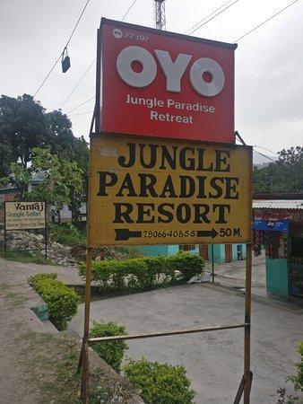 Review for jungle paradise retreat resort
