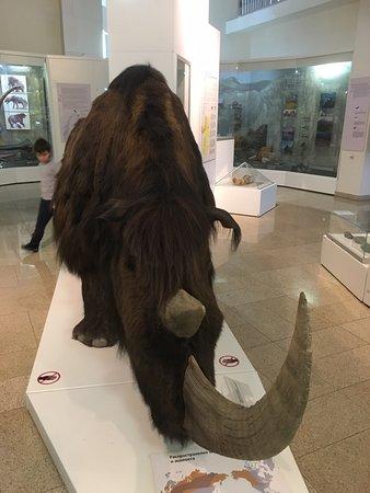 Musée intéressant