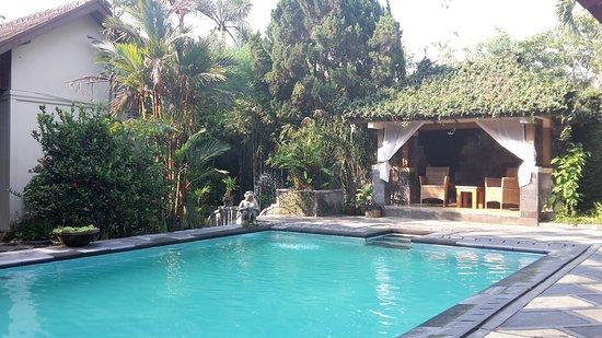 Het zwembad bij het hotel