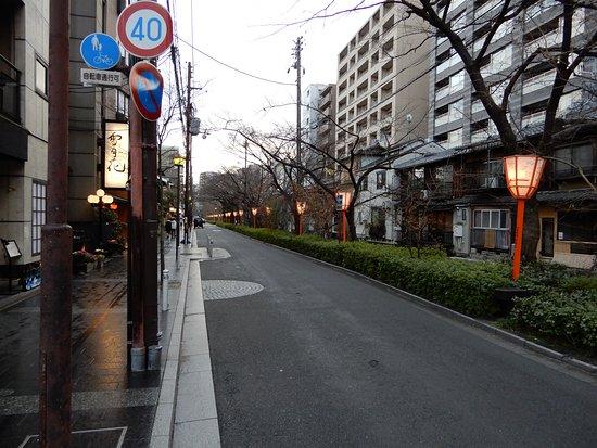 Kiyamachi Street: 五条方面に向かう途中、松原橋の手前地点