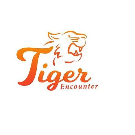 Tiger Encounter