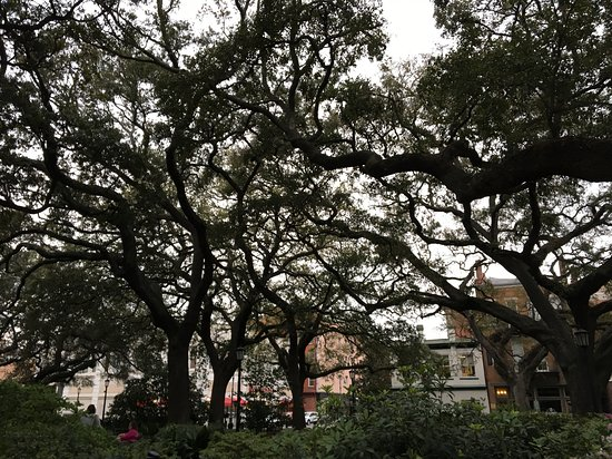 One of the many parks of Savannah, GA