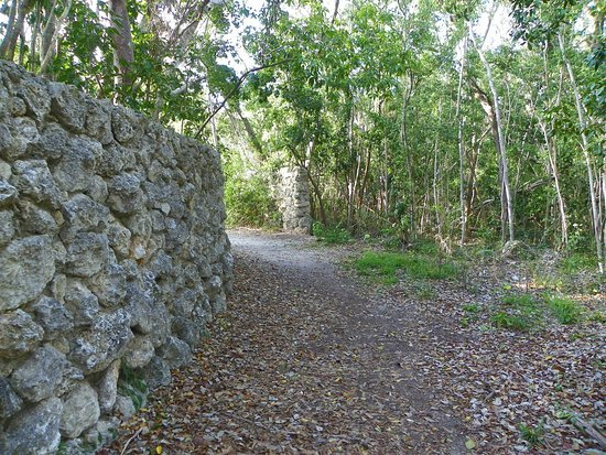 Dagny Johnson Key Largo Hammock Botanical State Park: main trail