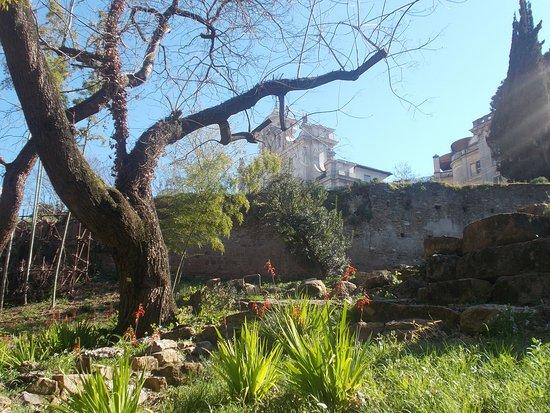 Orto Botanico di Roma - Scorcio con Fontana dell'Acqua Paola