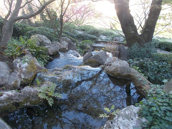Orto Botanico di Roma - Giardino giapponese