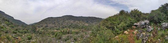 Ein Hod, Israel: View